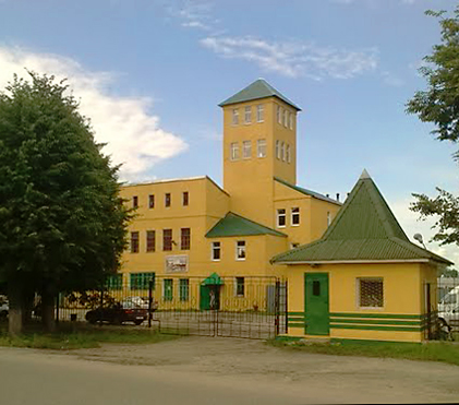 Родники и Родниковский район
